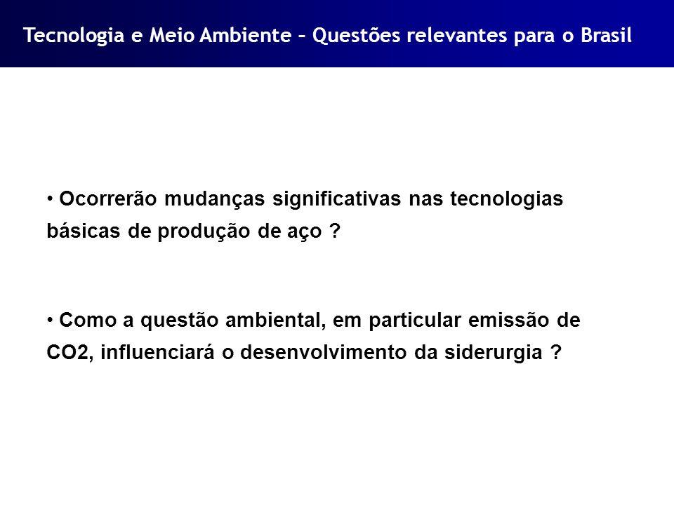 Tecnologia e Meio Ambiente – Questões relevantes para o Brasil