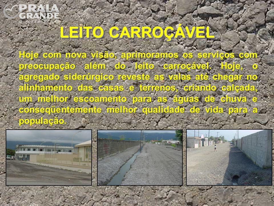 LEITO CARROÇÁVEL