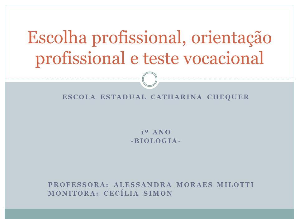Escolha profissional, orientação profissional e teste vocacional