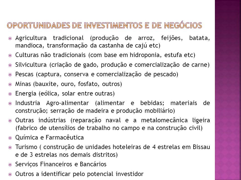 OPORTUNIDADES DE INVESTIMENTOS E DE NEGÓCIOS