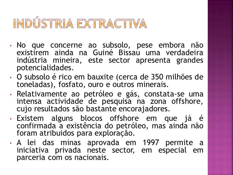 Indústria extractiva
