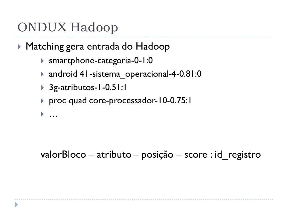 ONDUX Hadoop Matching gera entrada do Hadoop