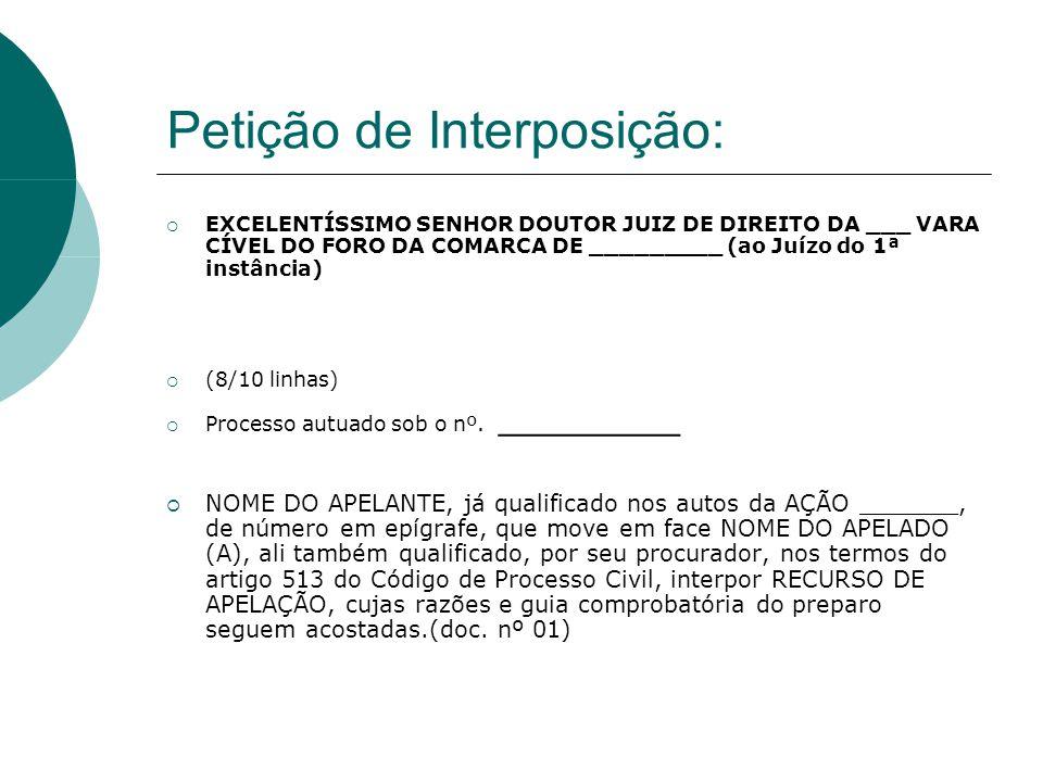 Petição de Interposição: