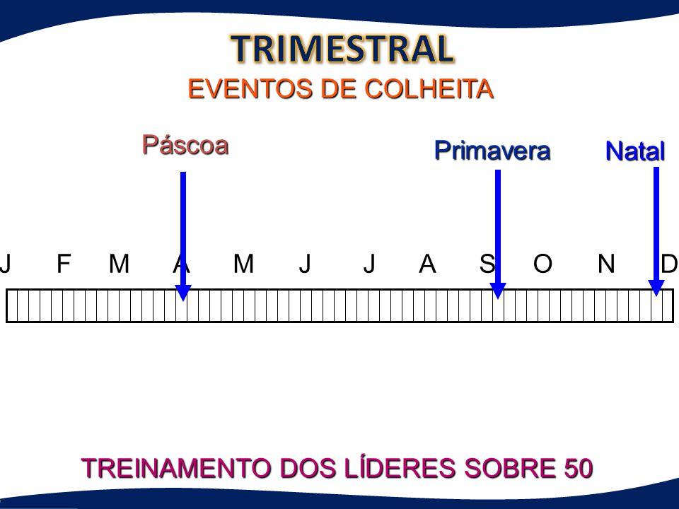 TREINAMENTO DOS LÍDERES SOBRE 50