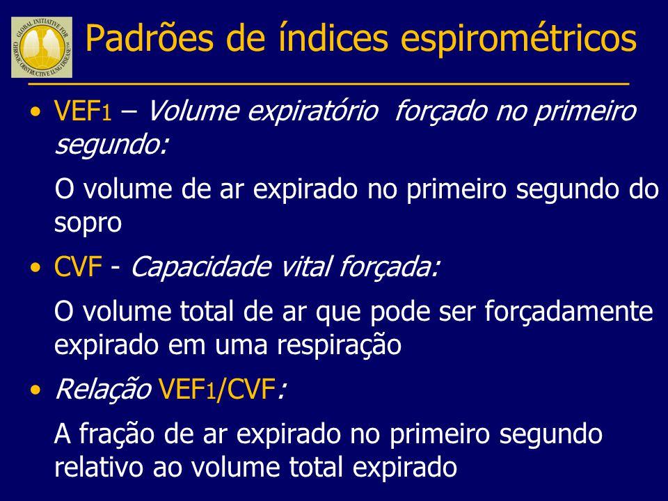 Padrões de índices espirométricos