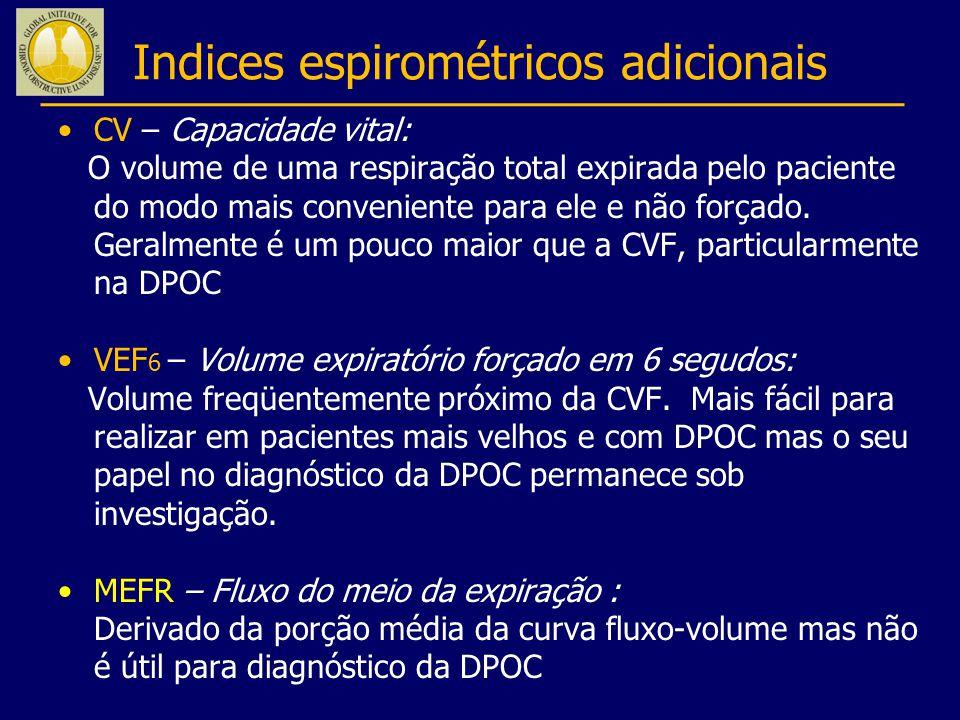 Indices espirométricos adicionais
