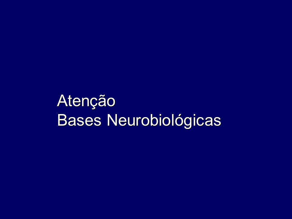 Atenção Bases Neurobiológicas