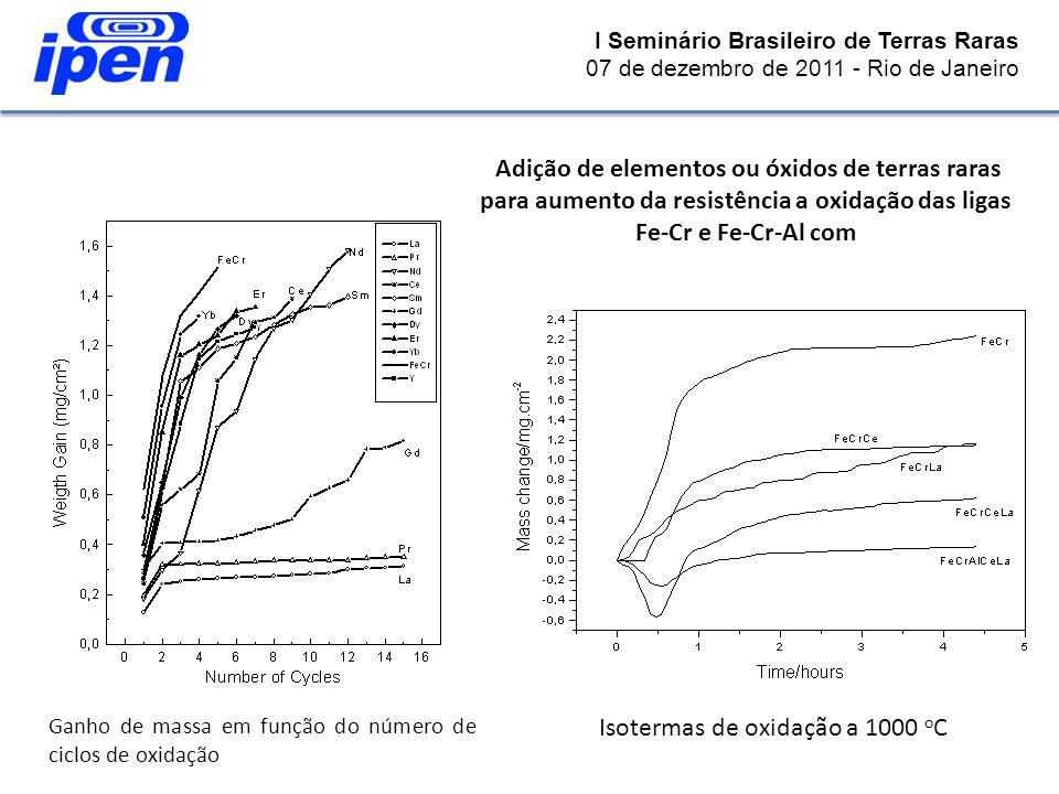 Isotermas de oxidação a 1000 oC
