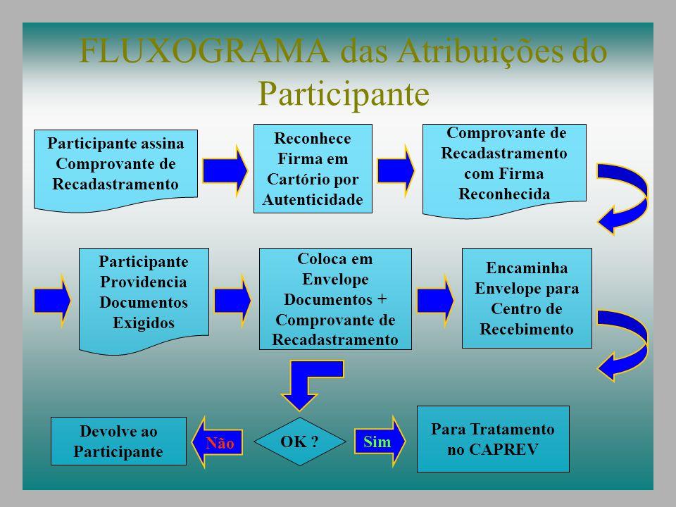 FLUXOGRAMA das Atribuições do Participante
