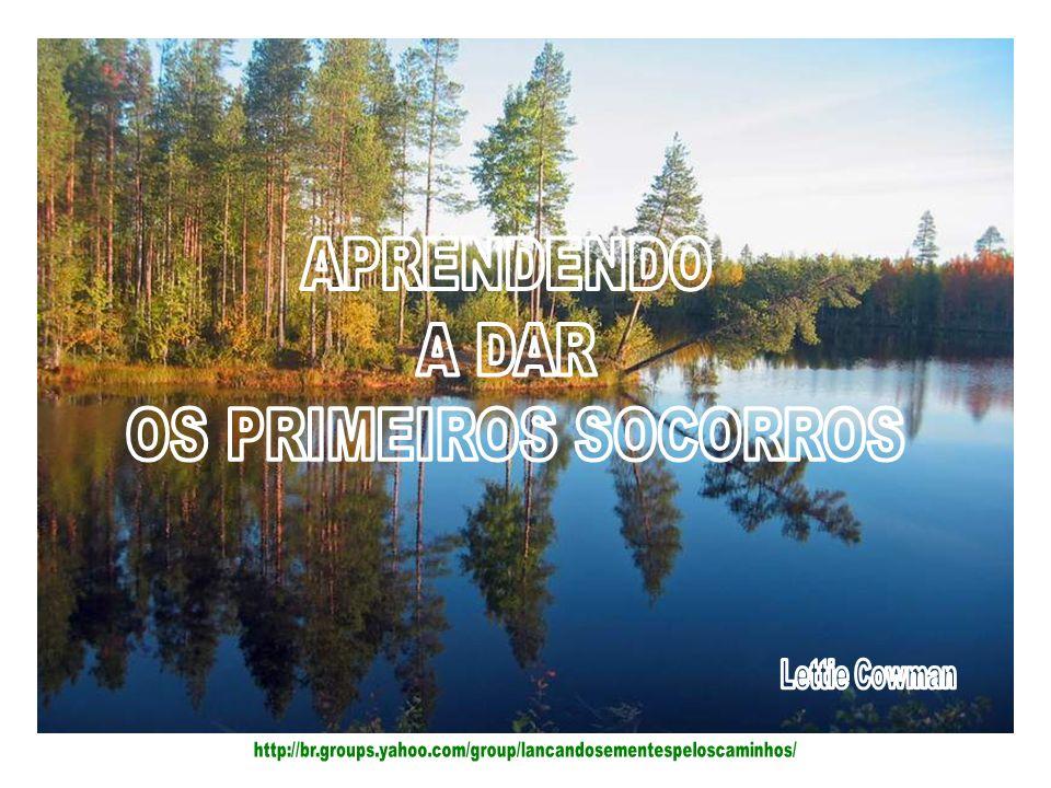 APRENDENDO A DAR OS PRIMEIROS SOCORROS Lettie Cowman