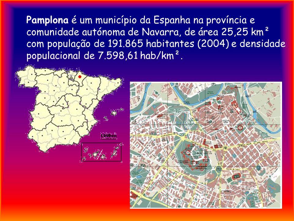 Pamplona é um município da Espanha na província e