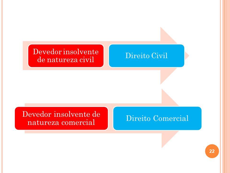 Devedor insolvente de natureza civil Direito Civil