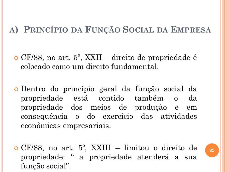 a) Princípio da Função Social da Empresa