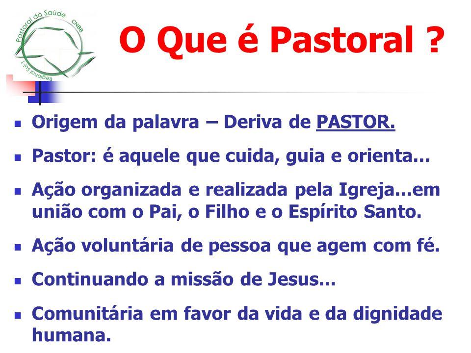 O Que é Pastoral Origem da palavra – Deriva de PASTOR.