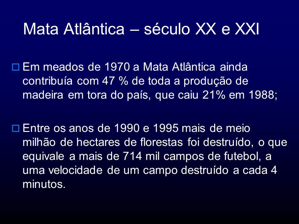 Mata Atlântica – século XX e XXI