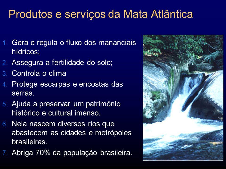 Produtos e serviços da Mata Atlântica