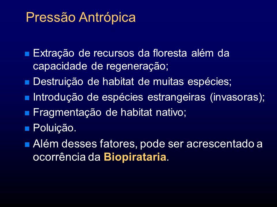 Pressão Antrópica Extração de recursos da floresta além da capacidade de regeneração; Destruição de habitat de muitas espécies;