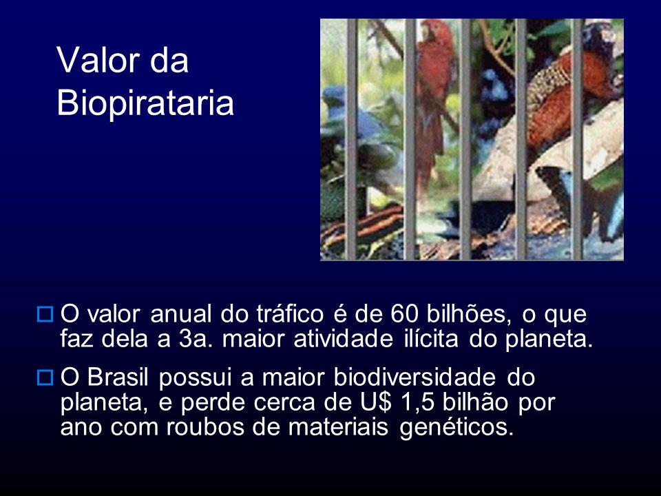 Valor da Biopirataria O valor anual do tráfico é de 60 bilhões, o que faz dela a 3a. maior atividade ilícita do planeta.