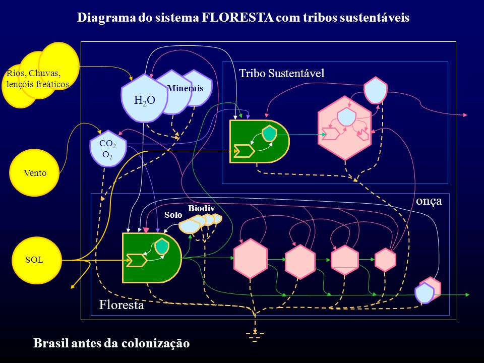 Diagrama do sistema FLORESTA com tribos sustentáveis