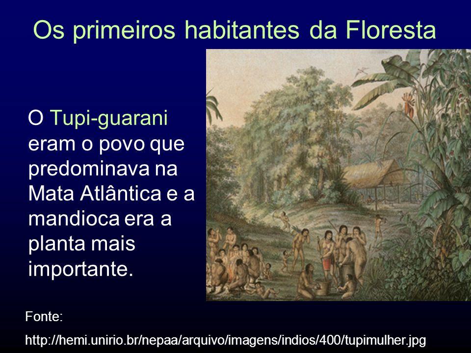 Os primeiros habitantes da Floresta