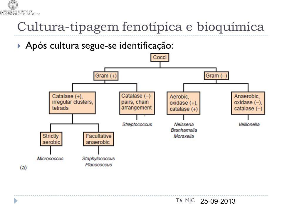 Cultura-tipagem fenotípica e bioquímica