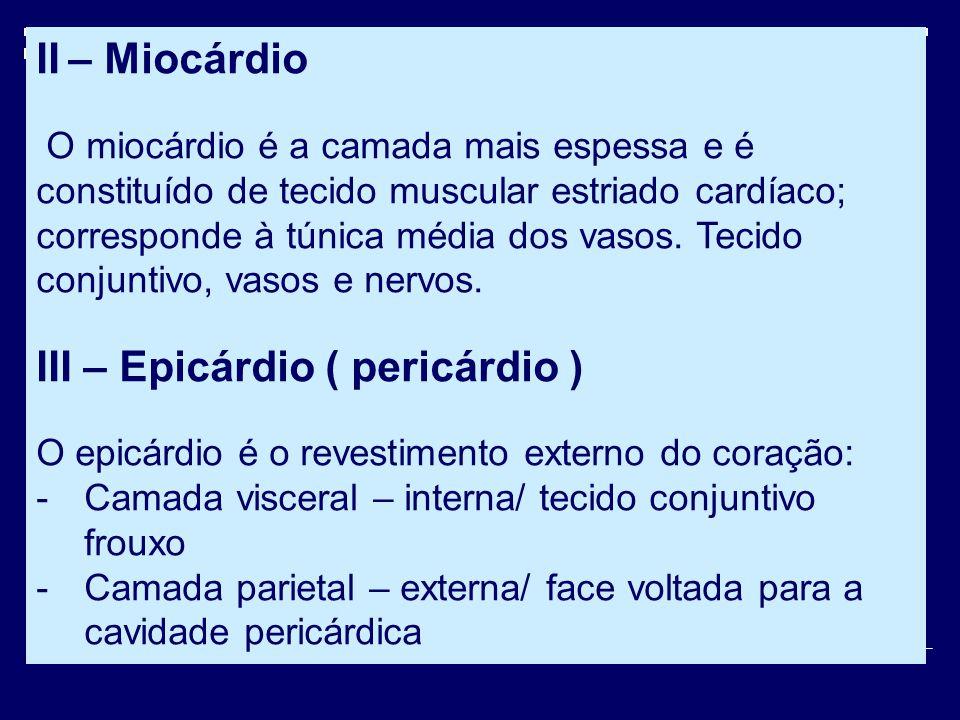 III – Epicárdio ( pericárdio )