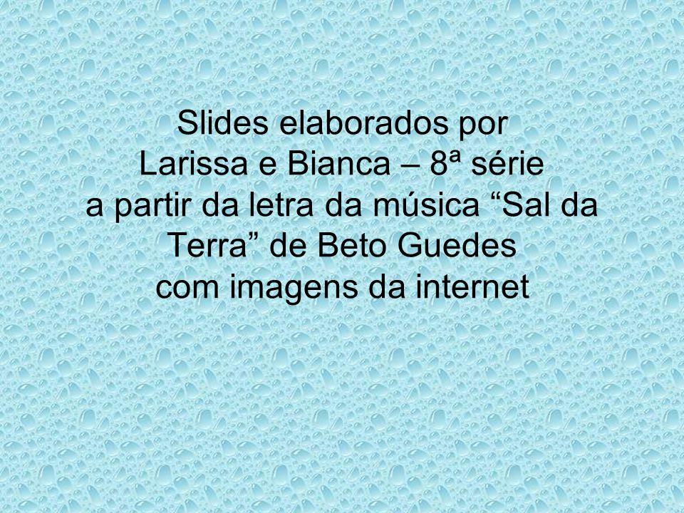 Slides elaborados por Larissa e Bianca – 8ª série a partir da letra da música Sal da Terra de Beto Guedes com imagens da internet