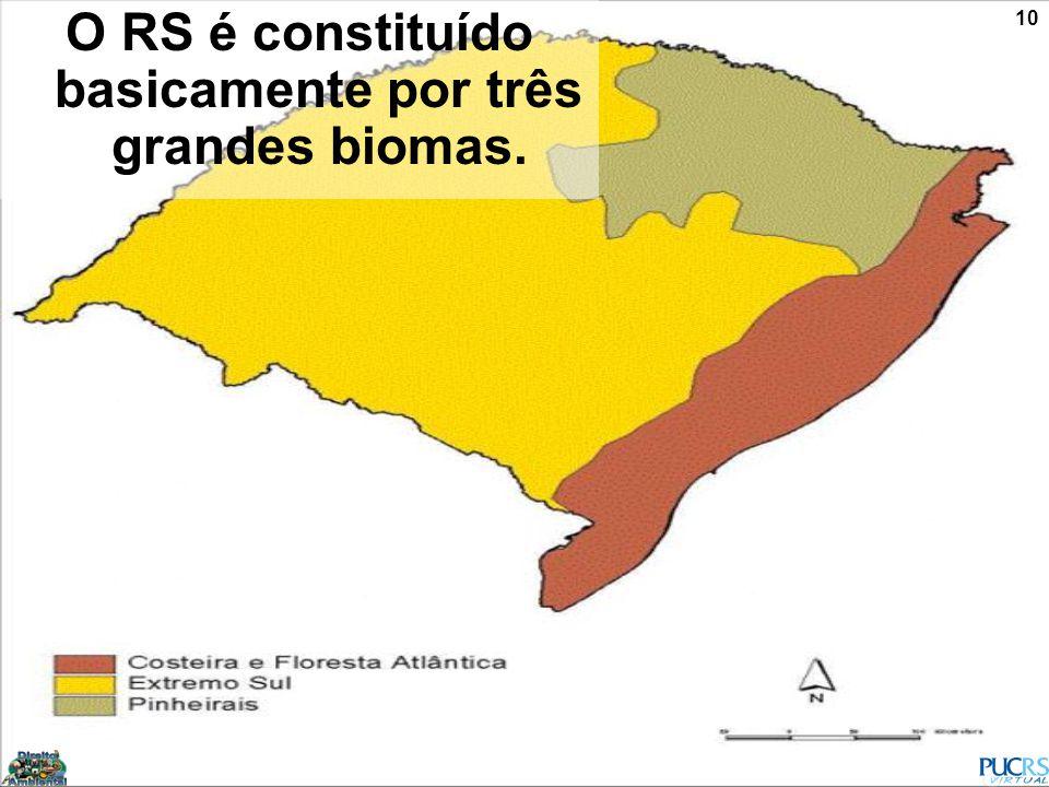 O RS é constituído basicamente por três grandes biomas.