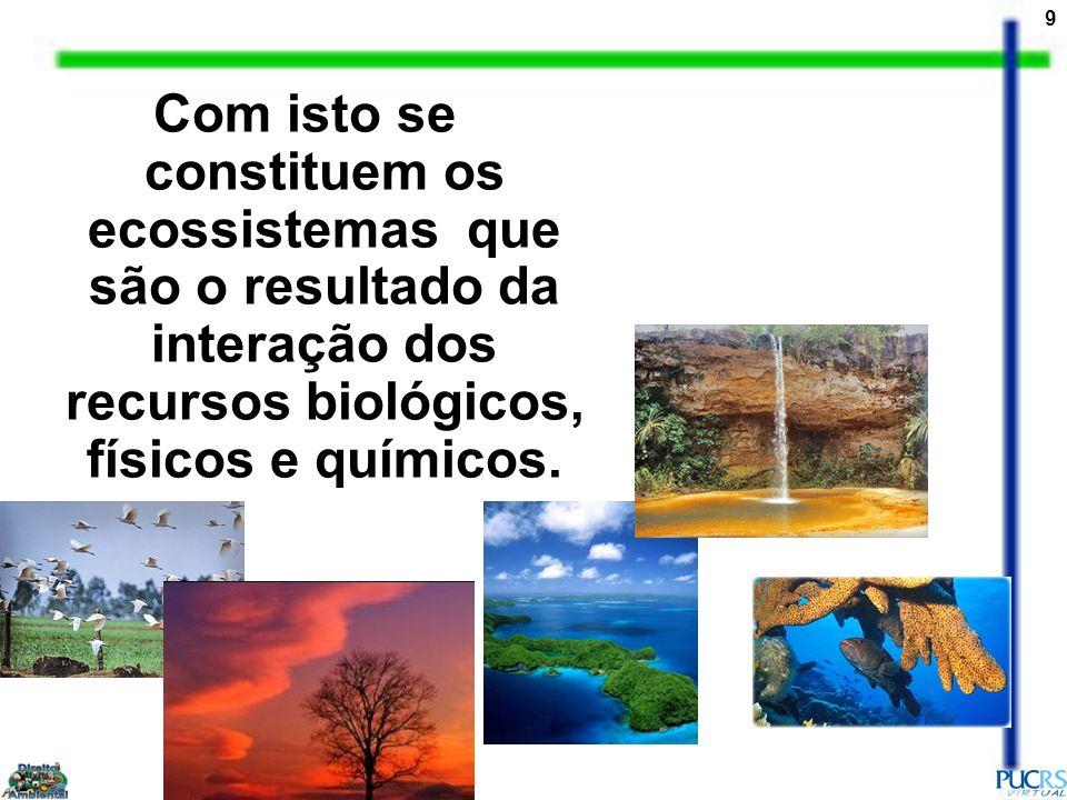 Com isto se constituem os ecossistemas que são o resultado da interação dos recursos biológicos, físicos e químicos.