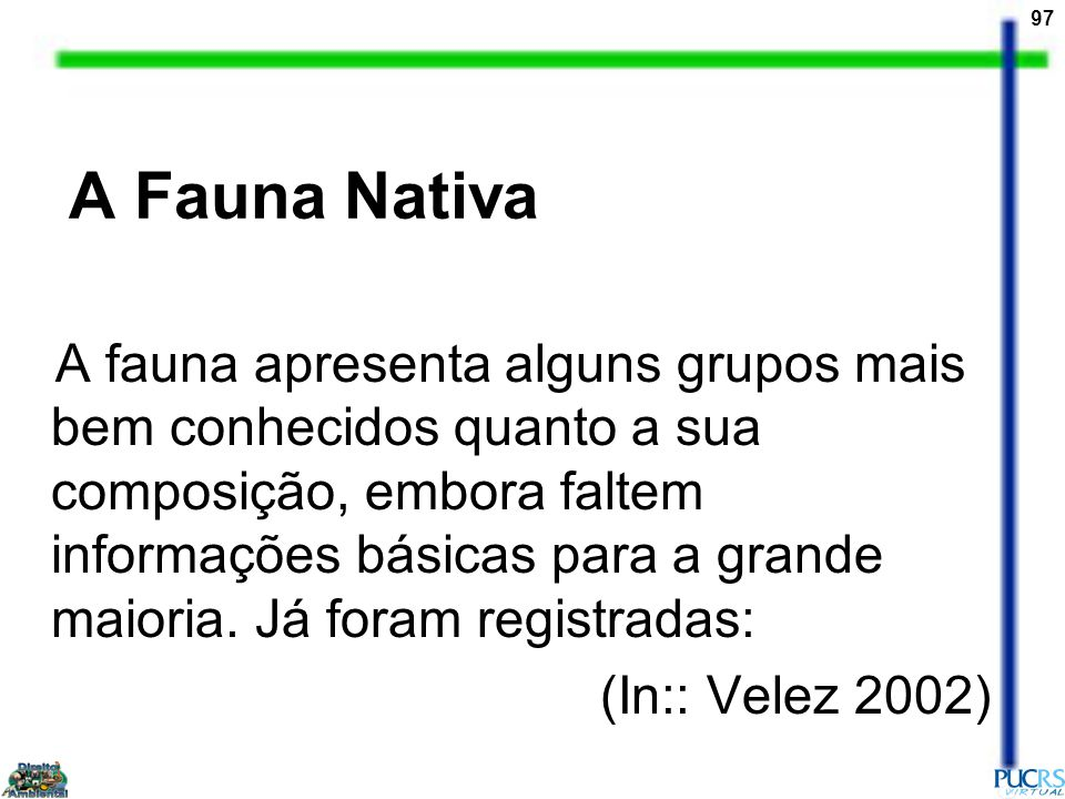 A Fauna Nativa