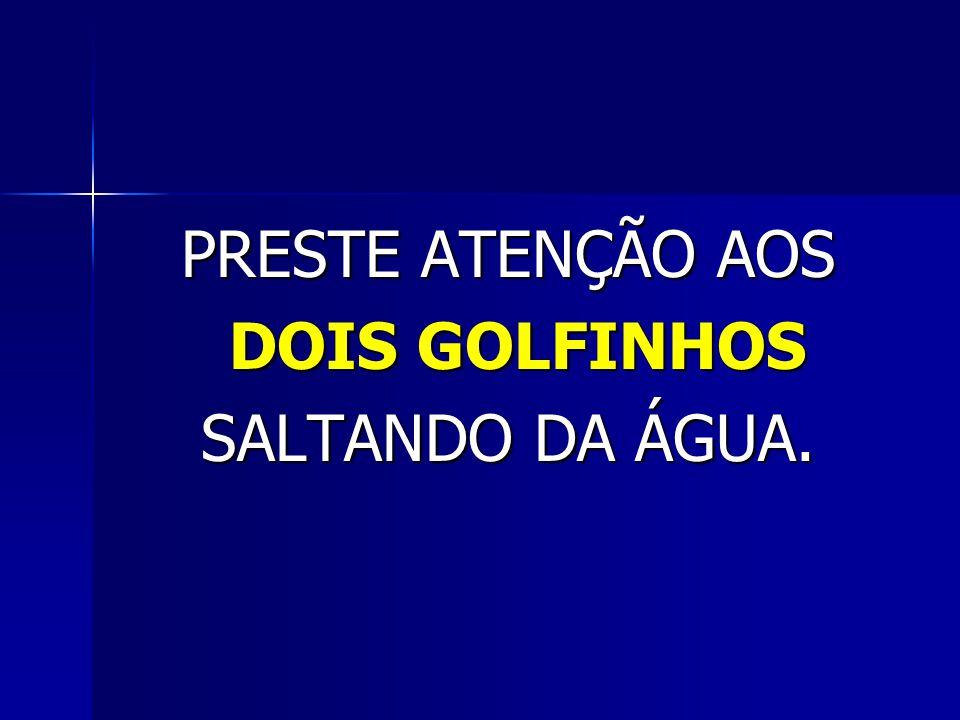 PRESTE ATENÇÃO AOS DOIS GOLFINHOS SALTANDO DA ÁGUA.