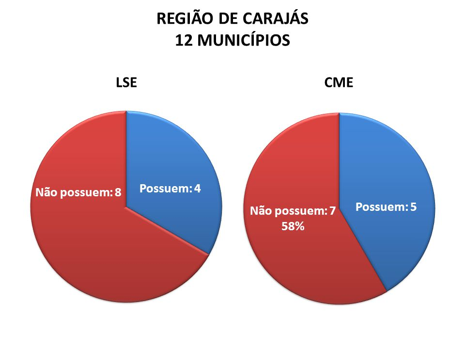 REGIÃO DE CARAJÁS 12 MUNICÍPIOS