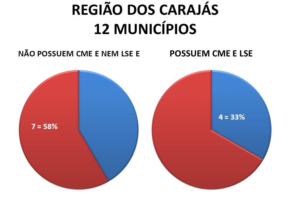 REGIÃO DOS CARAJÁS 12 MUNICÍPIOS