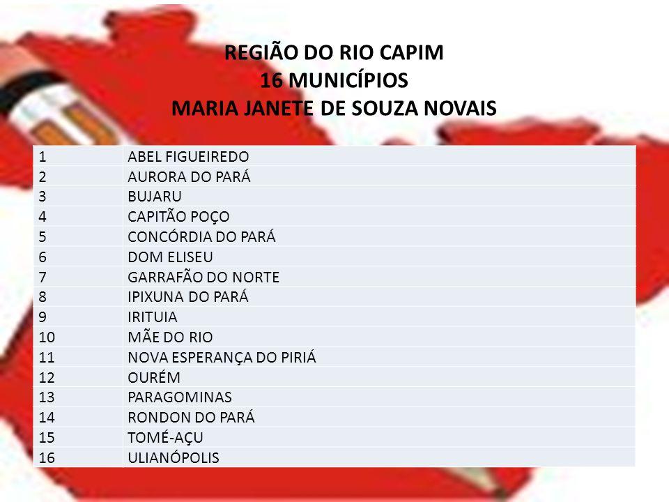 REGIÃO DO RIO CAPIM 16 MUNICÍPIOS MARIA JANETE DE SOUZA NOVAIS