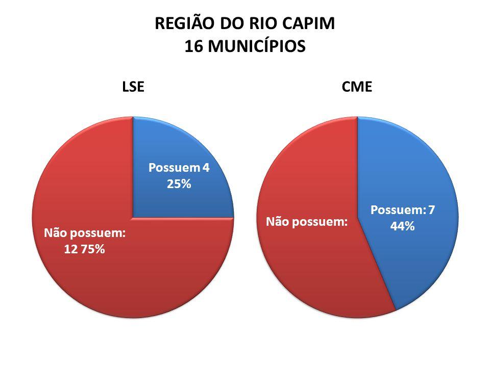 REGIÃO DO RIO CAPIM 16 MUNICÍPIOS