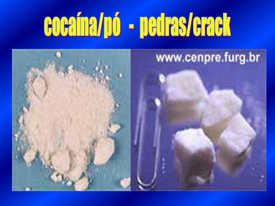 cocaína/pó - pedras/crack