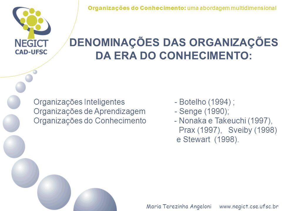 DENOMINAÇÕES DAS ORGANIZAÇÕES DA ERA DO CONHECIMENTO:
