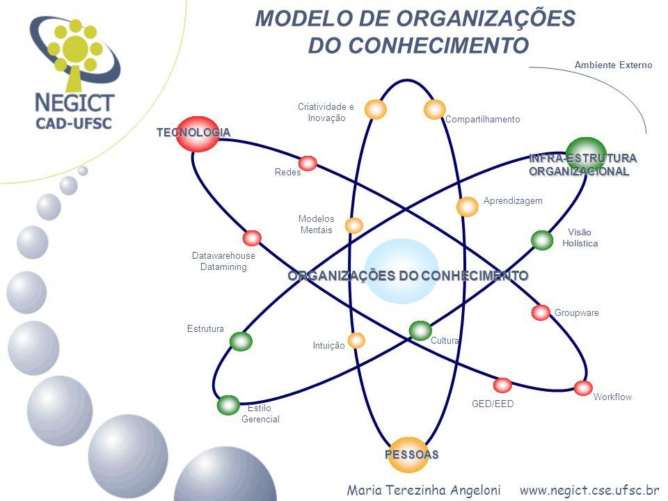 MODELO DE ORGANIZAÇÕES