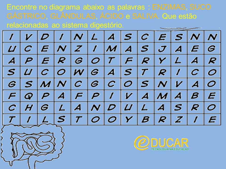 Encontre no diagrama abaixo as palavras : ENZIMAS, SUCO GÁSTRICO, GLÂNDULAS, ÁCIDO e SALIVA.