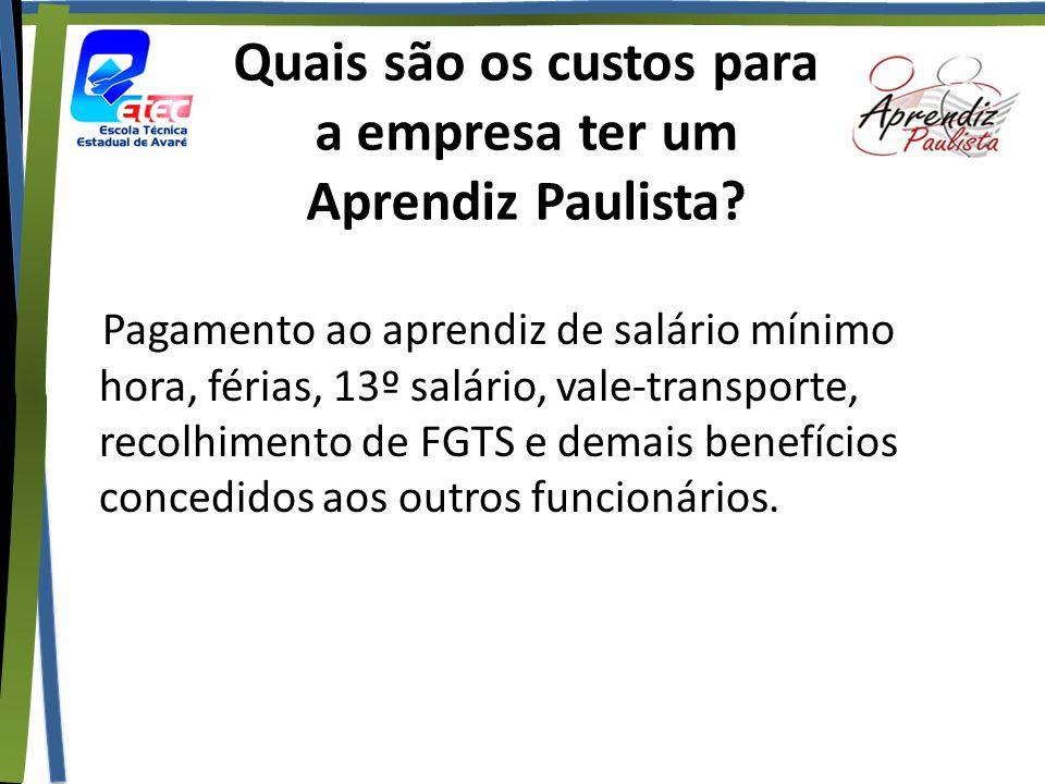 Quais são os custos para a empresa ter um Aprendiz Paulista