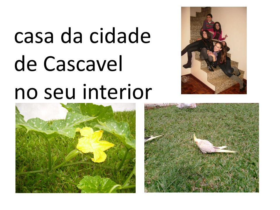 casa da cidade de Cascavel no seu interior