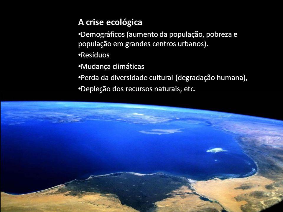 A crise ecológica Demográficos (aumento da população, pobreza e população em grandes centros urbanos).