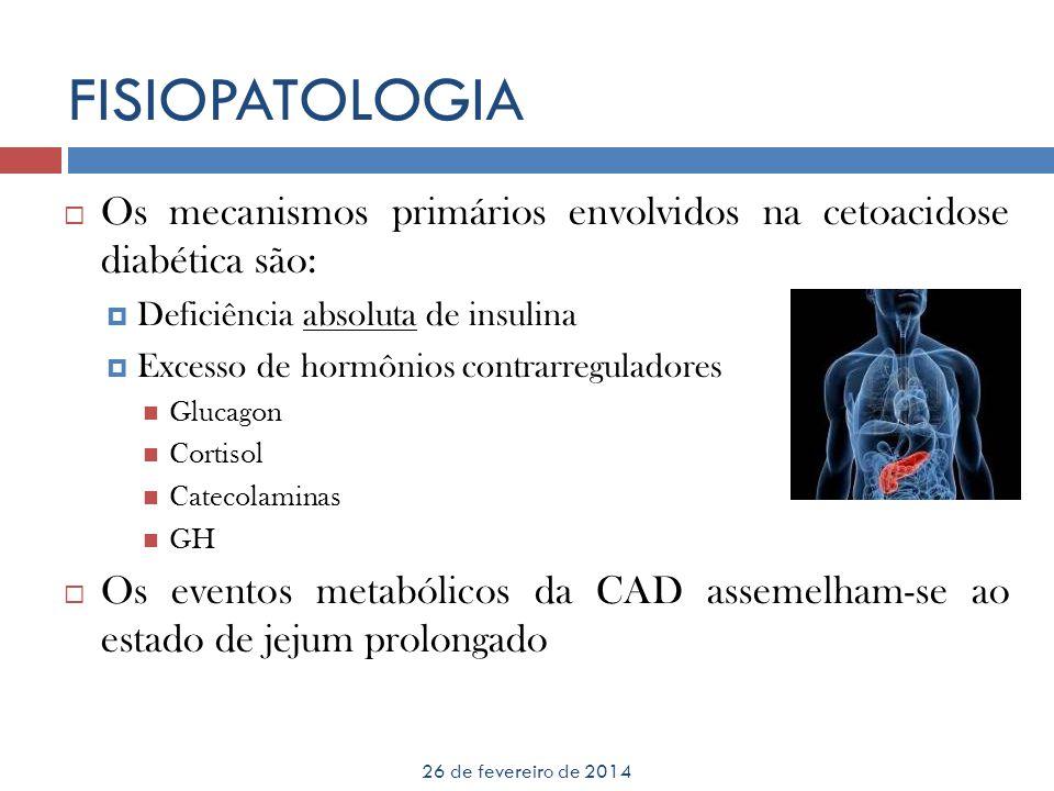 FISIOPATOLOGIA Os mecanismos primários envolvidos na cetoacidose diabética são: Deficiência absoluta de insulina.