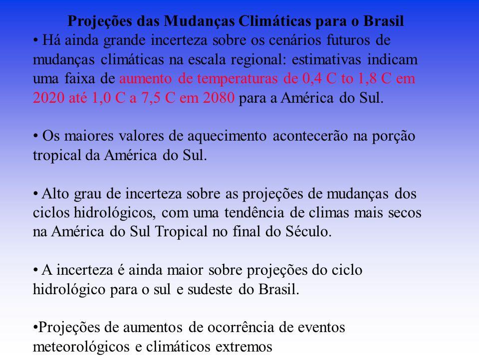 Projeções das Mudanças Climáticas para o Brasil