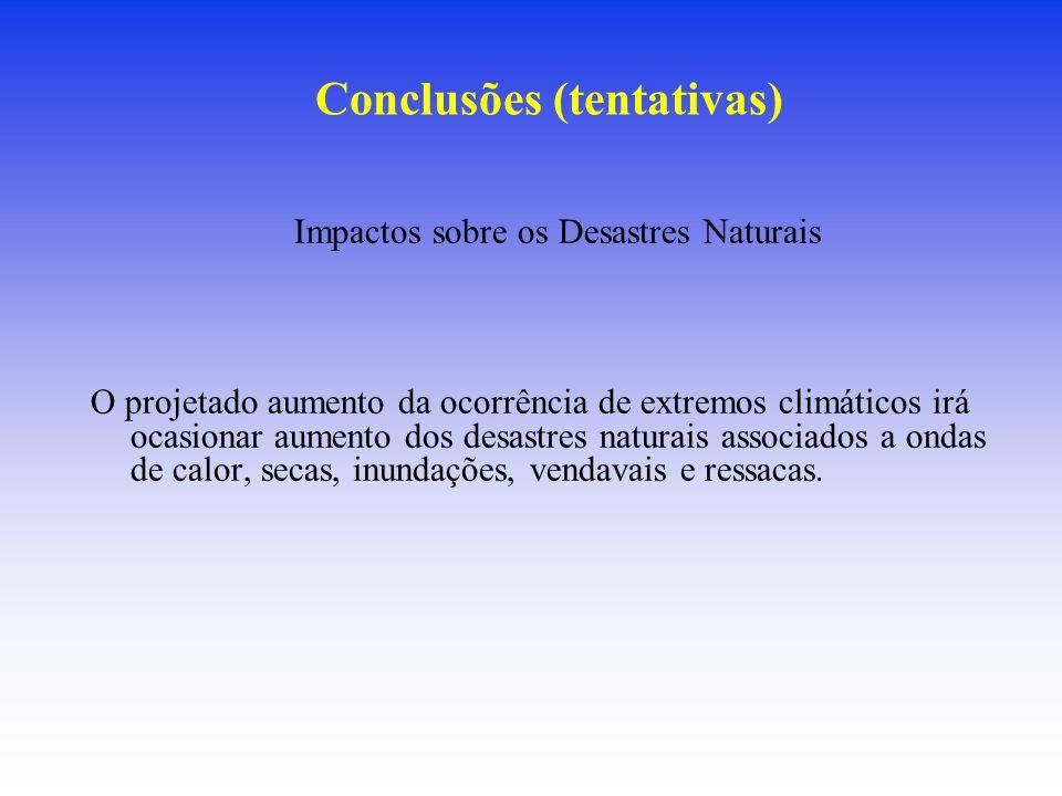 Conclusões (tentativas)