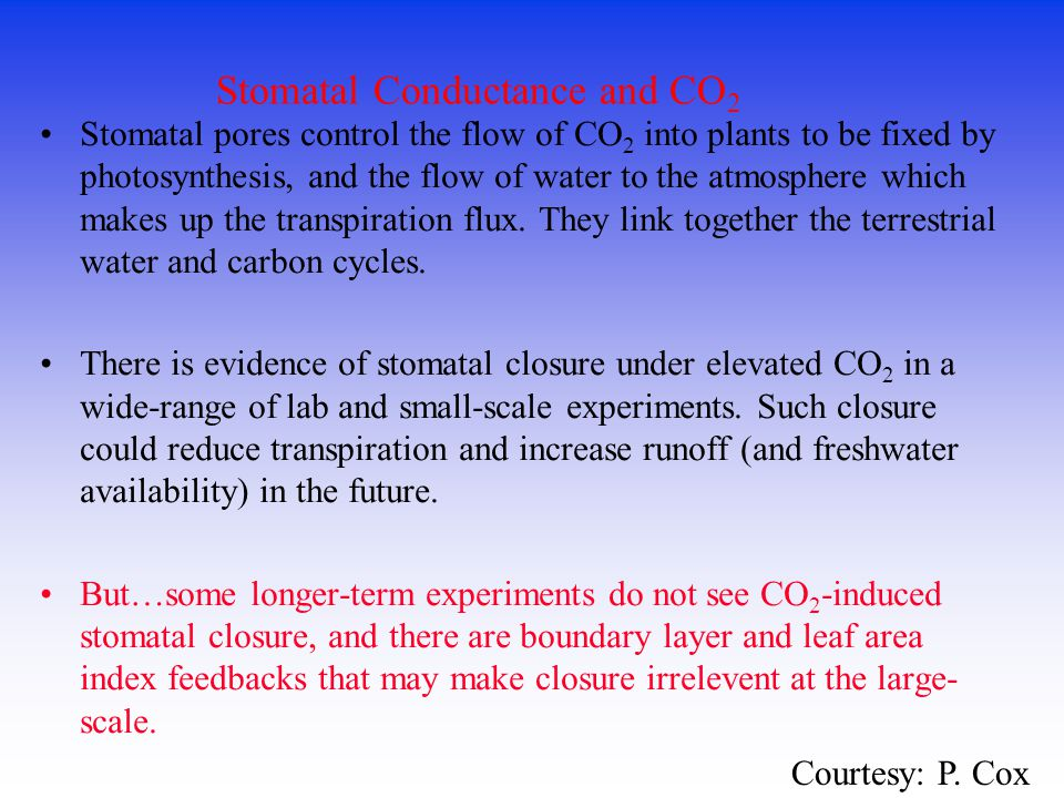 Stomatal Conductance and CO2
