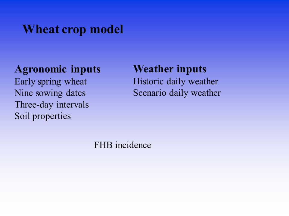 Wheat crop model Agronomic inputs Weather inputs Early spring wheat