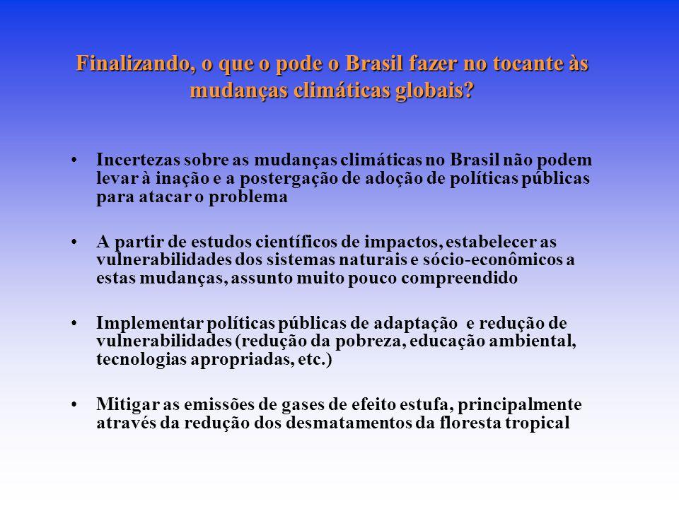 Finalizando, o que o pode o Brasil fazer no tocante às mudanças climáticas globais