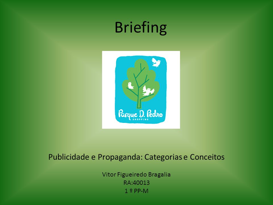Briefing Publicidade e Propaganda: Categorias e Conceitos