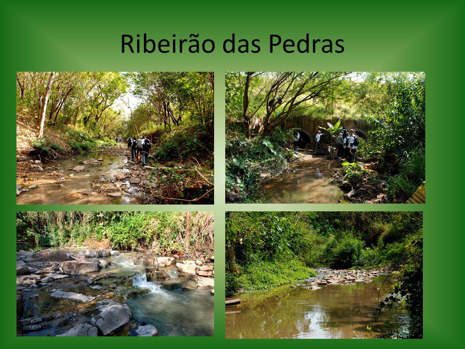 Ribeirão das Pedras